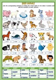 BABY ANIMALS NAMES (1of 2)