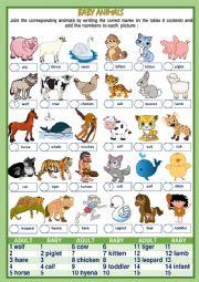 BABY ANIMALS NAMES