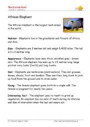 English Worksheet: African elephant Description