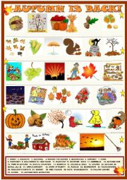 English Worksheet: Autumn is back : matching