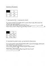 English Worksheet: Biology Genetics Problems