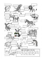 English Worksheet: ANIMAL BODY PARTS