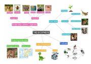 English Worksheet: The biosphere - Mindmap
