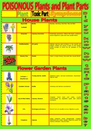 English Worksheet: Common Poisonous Plants and Plant Parts.