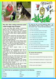 English Worksheet: Dog dies after eating a plant. Reading Comprehension + KEY