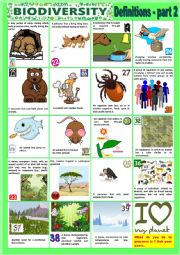 English Worksheet: Biodiversity - Definitions - Part 2 + KEY