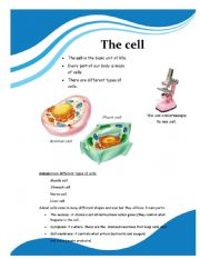 English Worksheet: CLIL the cells part 1