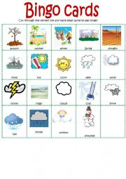 English Worksheet: Bingo for weather vocabulary
