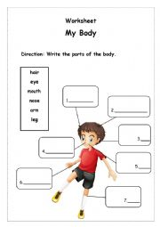English Worksheet: My Body