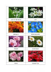 FLOWERS flashcards (part 2)