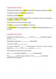 English Worksheet: the respiratory system