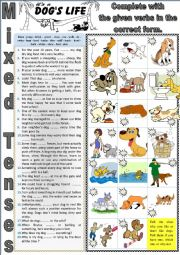 More about dogs I - It is a dog�s life. MIXED TENSES + KEY
