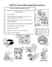 English Worksheet: Respiratory System Care