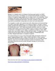 English worksheet: DENGUE A SILENT KILLER