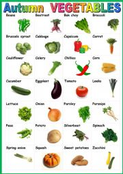 Autumn vegetables. Poster