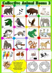 COLLECTIVE ANIMAL NOUNS 3 exercises + KEY