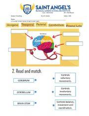 reading 4 quiz