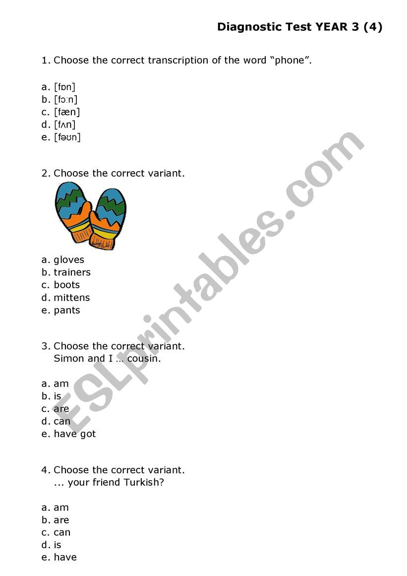 Multiple Choice Test Grade 3 worksheet