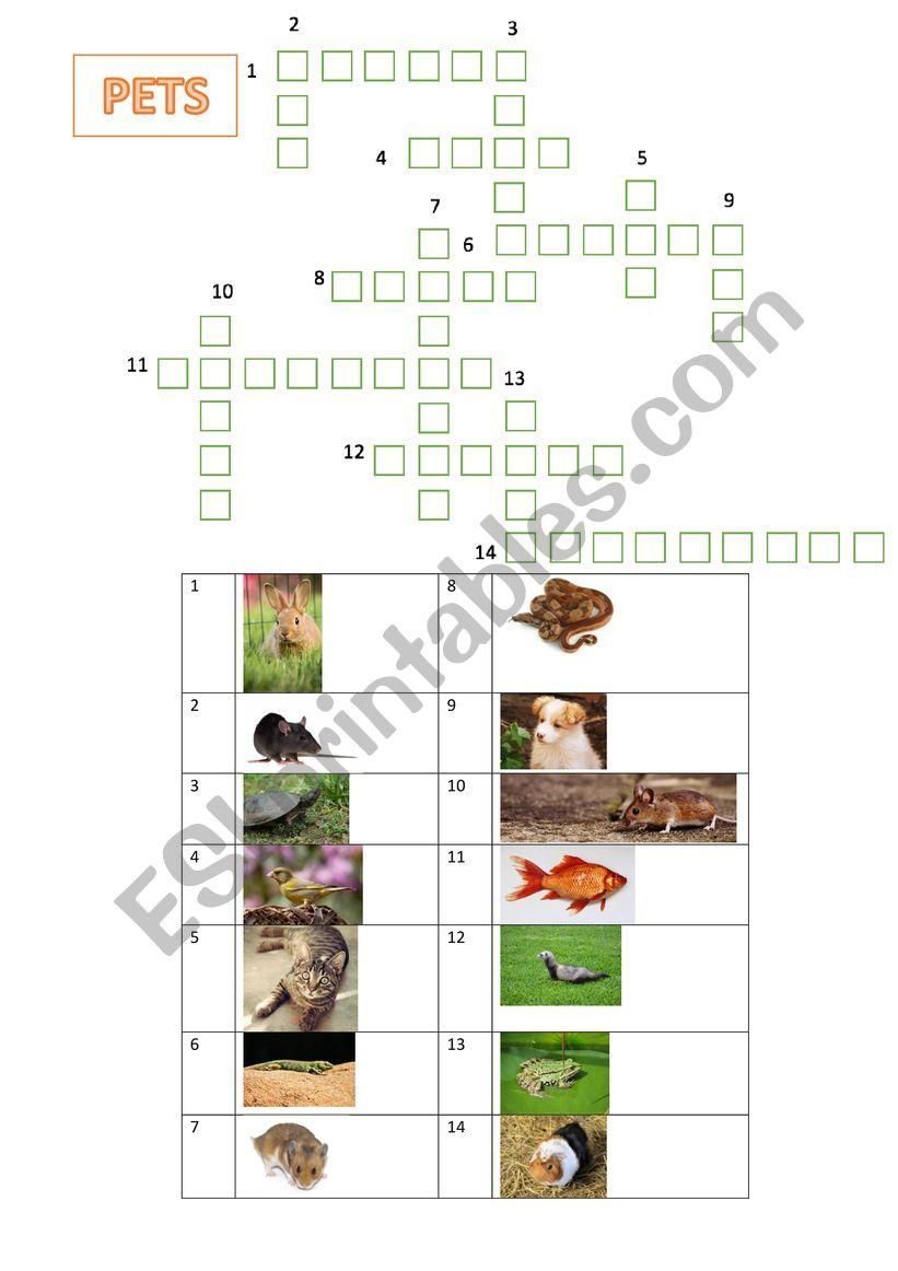 Crosswords pets worksheet