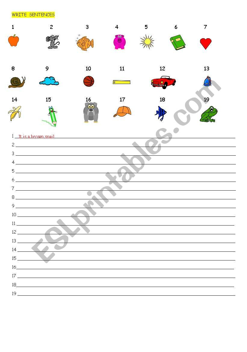 WRITE SENTENCES worksheet