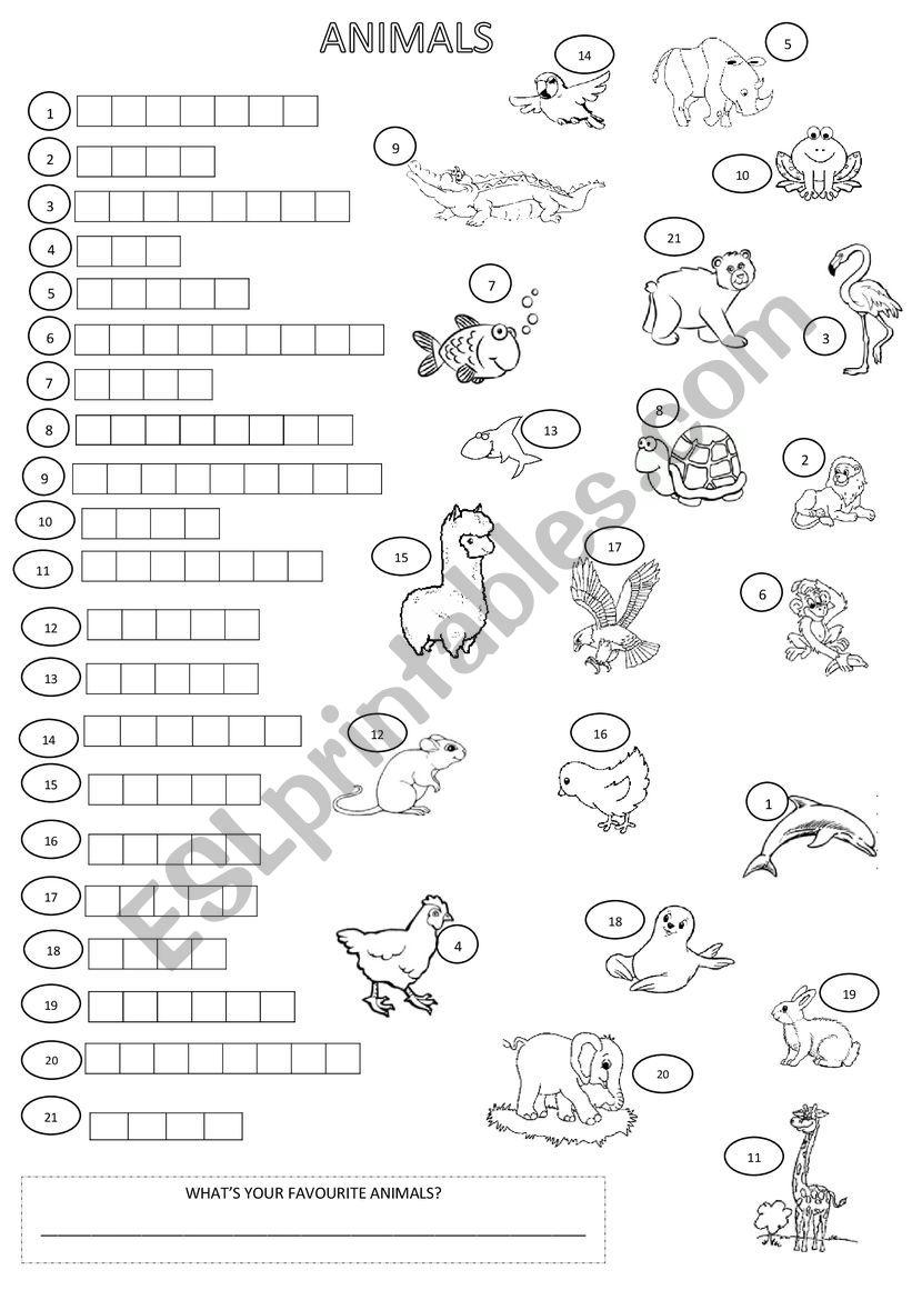ANIMALS CROSSWORD worksheet