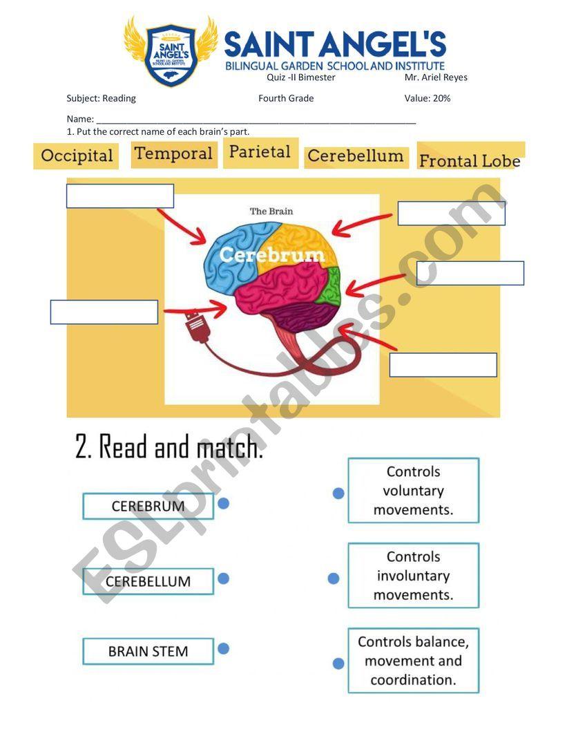 reading 4 quiz worksheet