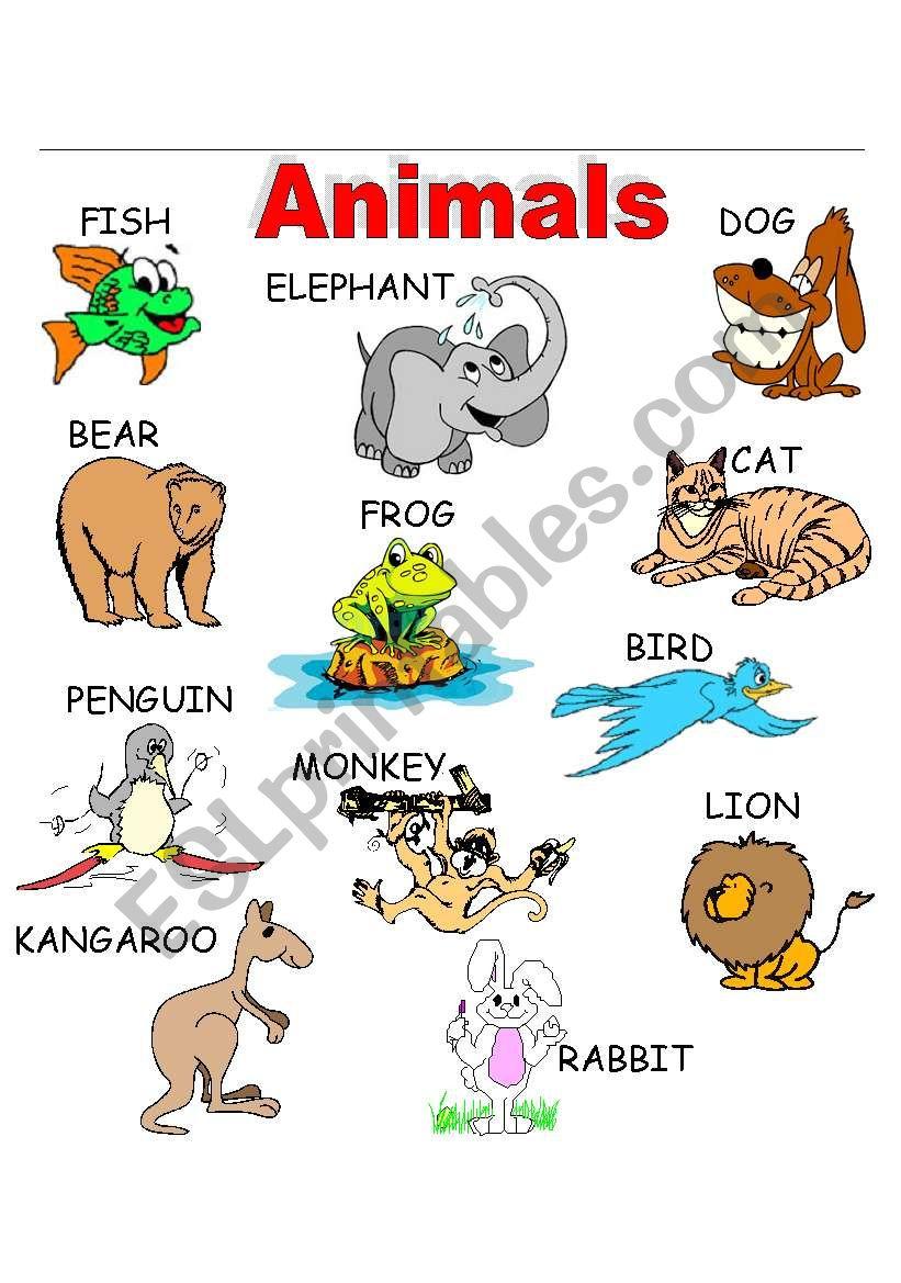 ANIMALS_1 worksheet