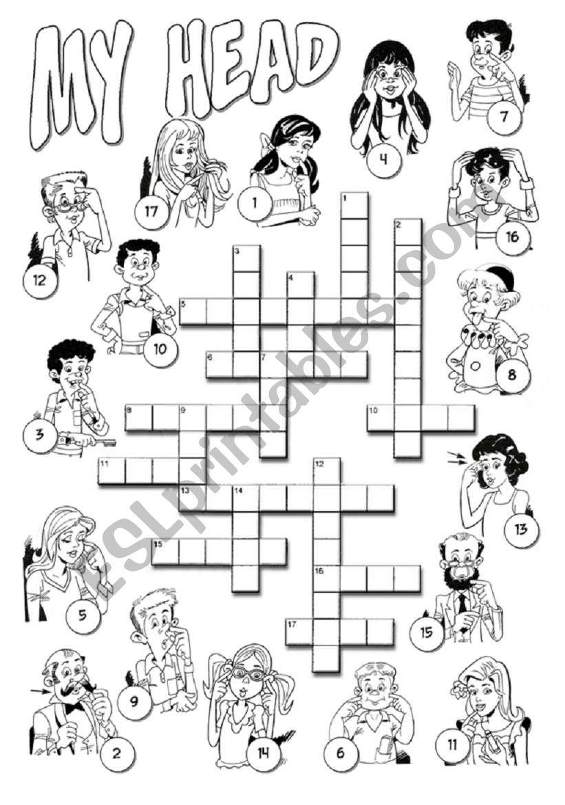 My Head Crossword worksheet