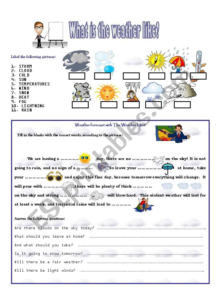 WHAT IS THE WEATHER LIKE? worksheet
