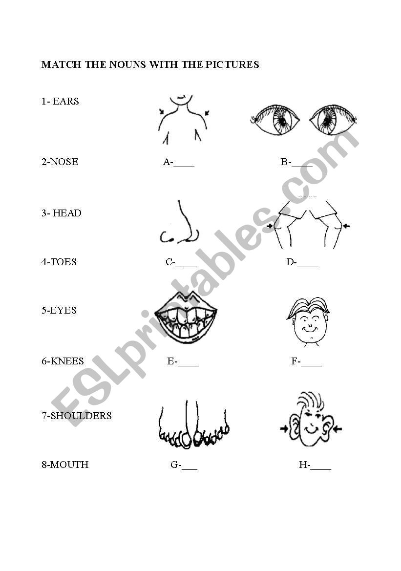 Body Parts Handout Esl Worksheet By Malibostanci