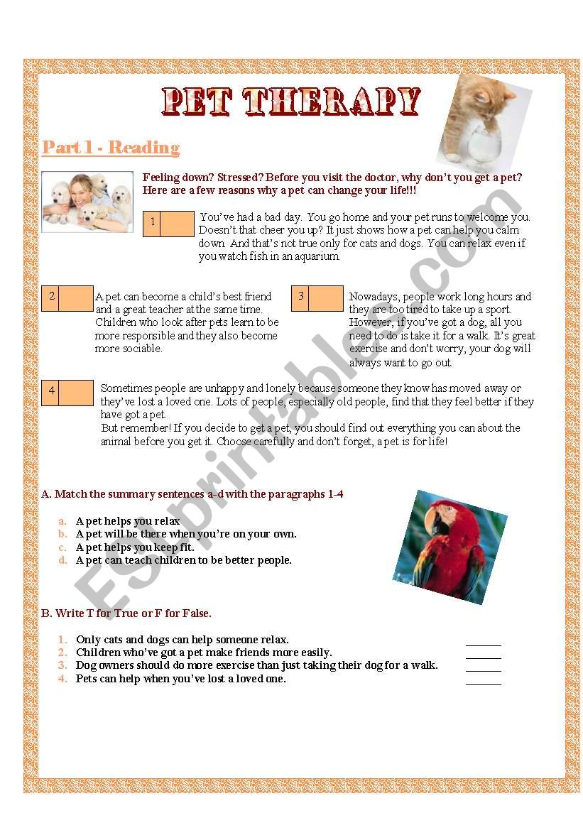 4 skills all about pets and animal rights part 1 esl worksheet by sickgeo f. Black Bedroom Furniture Sets. Home Design Ideas