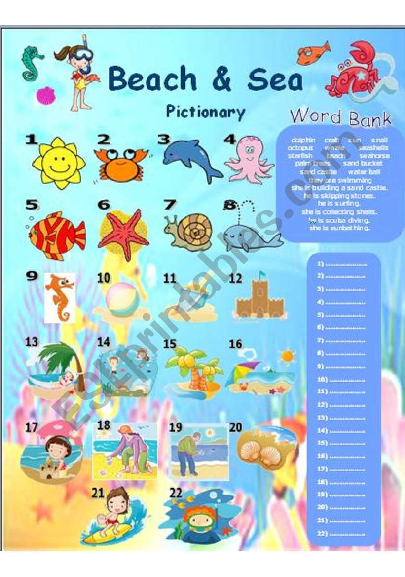Beach and Sea Pictionary worksheet