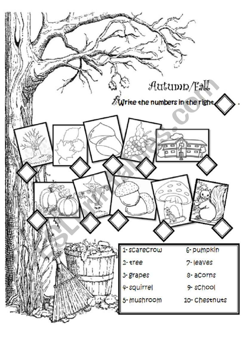 Autumn vocabulary worksheet