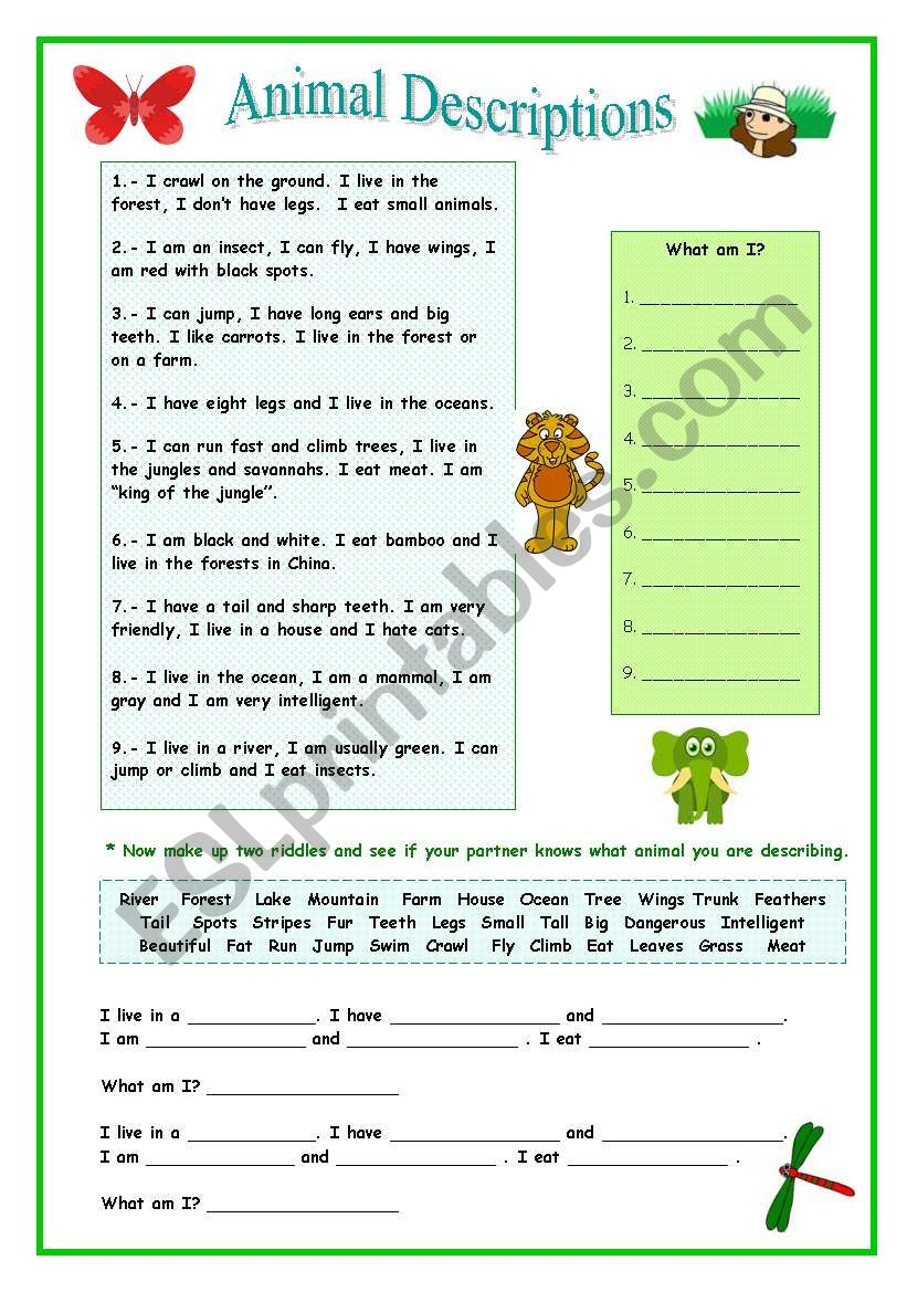 Animal Describing worksheet