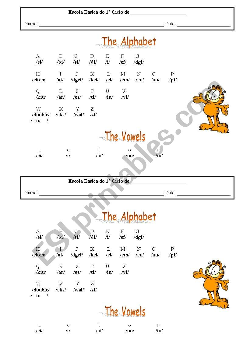 the alphabet worksheet