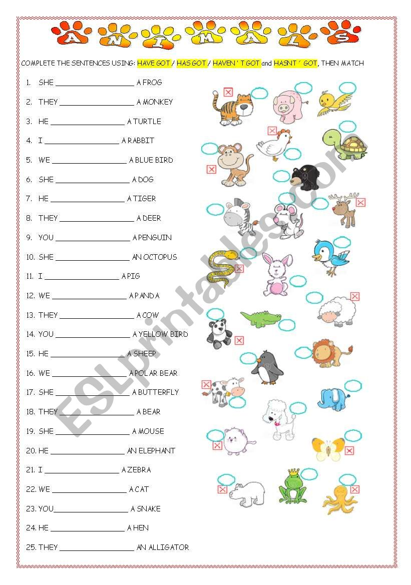 ANIMALS AND HAVE GOT worksheet