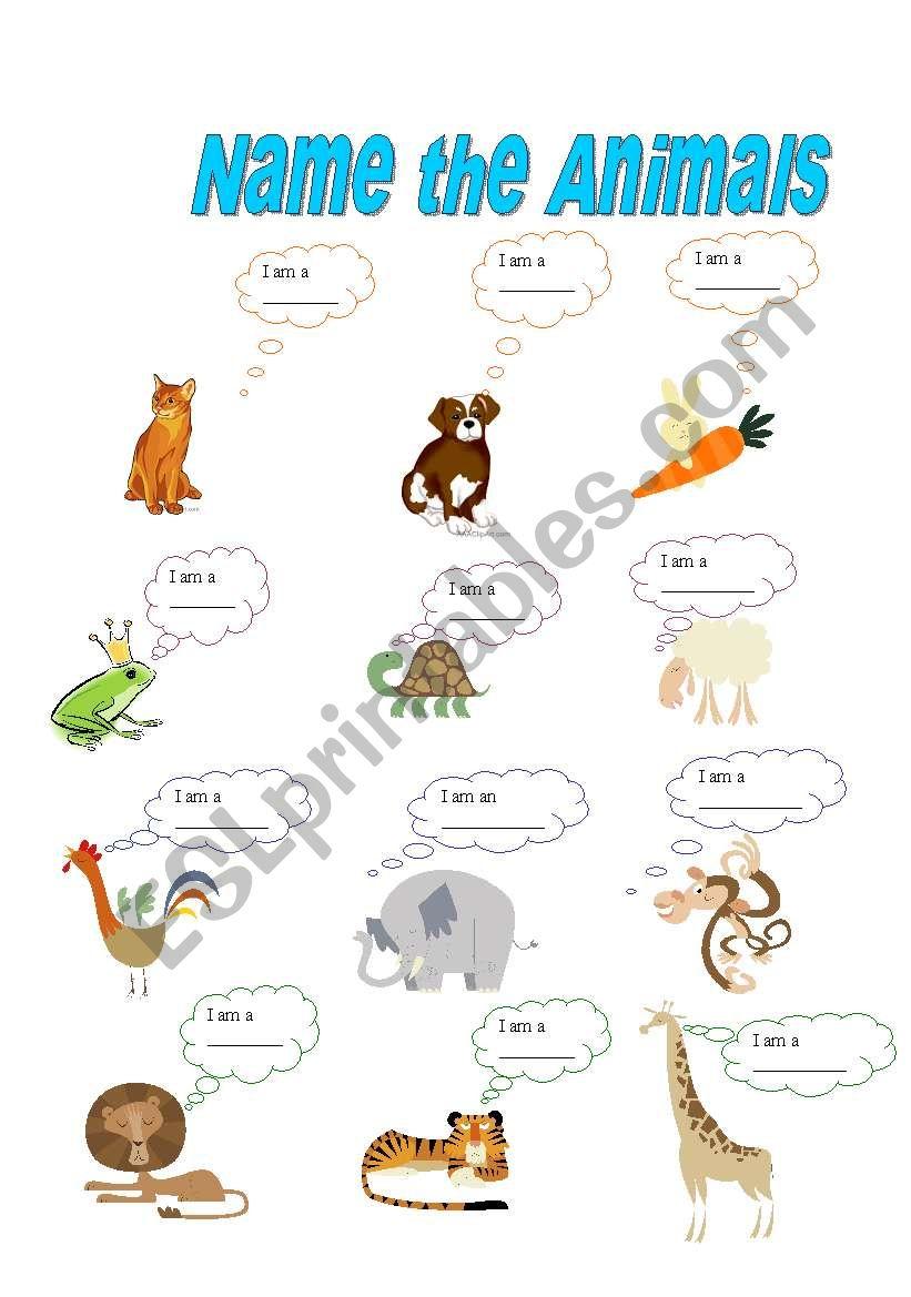 Name the animals worksheet