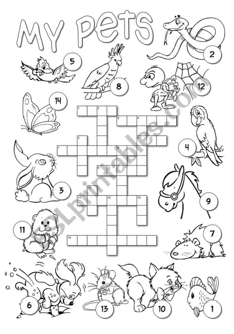 Pets Crossword worksheet