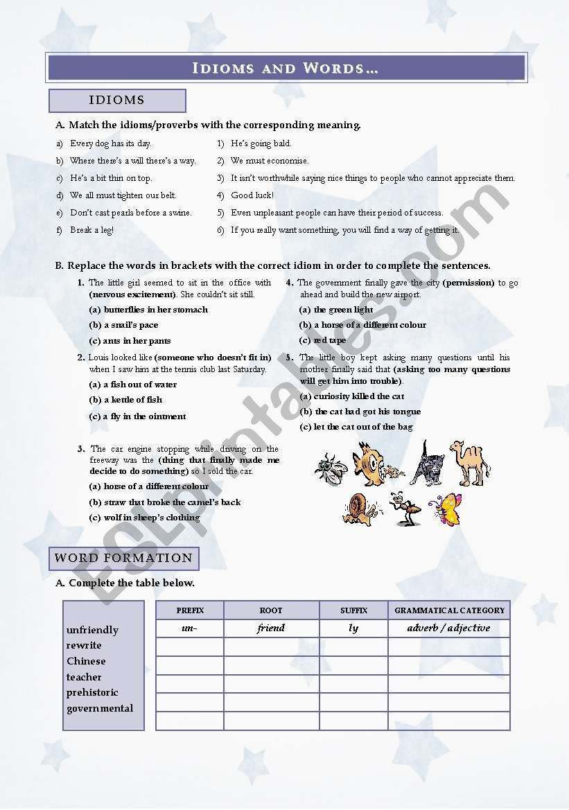 IDIOMS AND WORDS worksheet