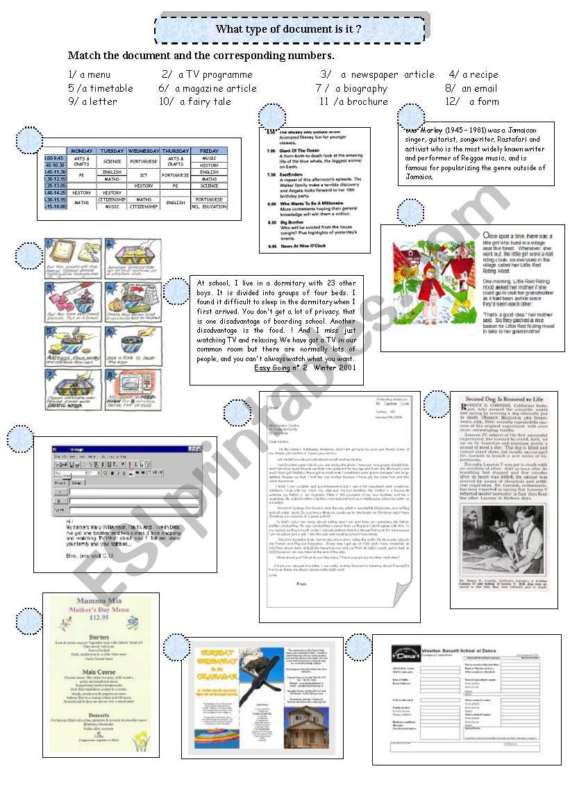 Reading strategies: types of document