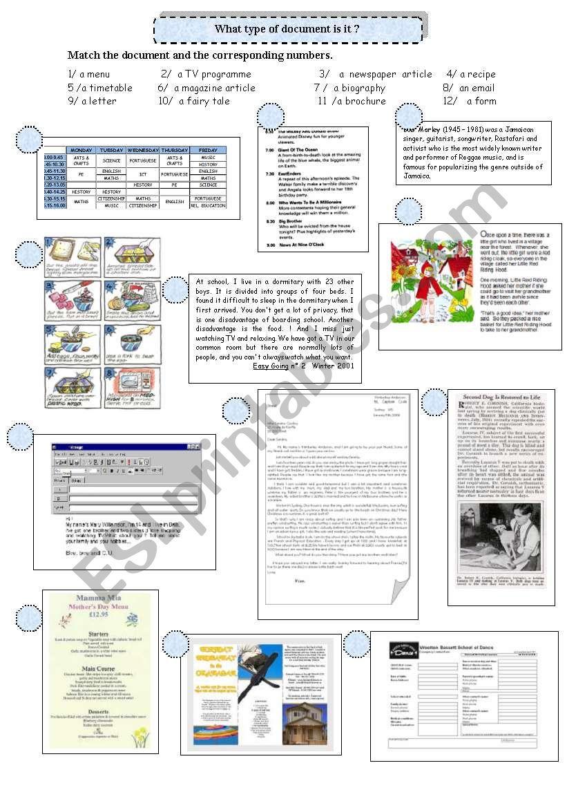 Reading strategies: types of document
