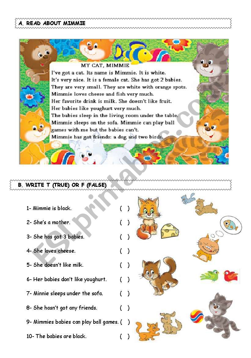 Reading Activity worksheet