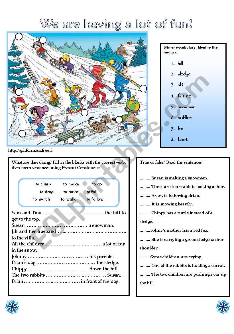 WE ARE HAVING A LOT OF FUN! worksheet