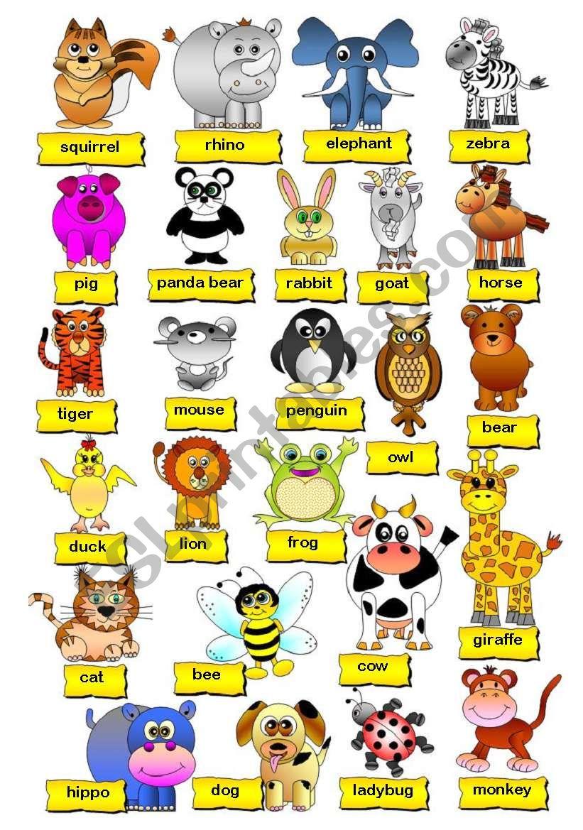 Animals Pictionary (1/2) worksheet