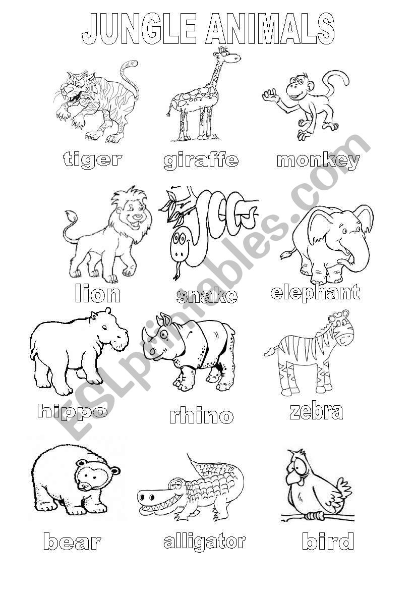 jungle animals coloring sheet esl worksheet by shannoncronin. Black Bedroom Furniture Sets. Home Design Ideas