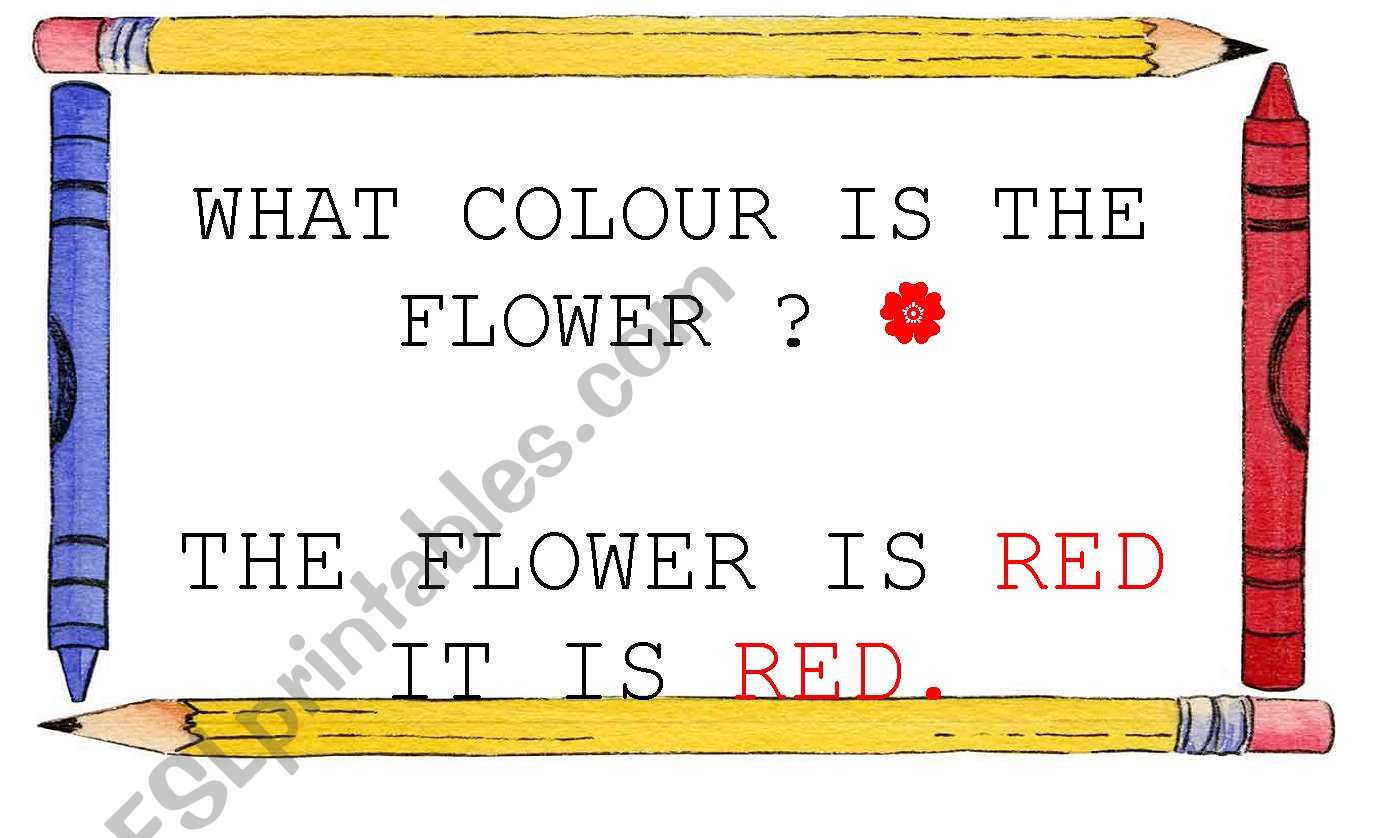 WHAT COLOUR IS THE FLOWER? SIGN