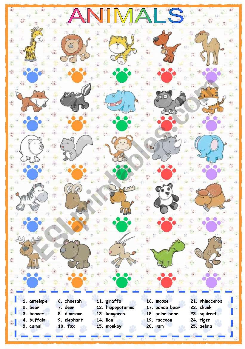 Animals (1 of 3) worksheet