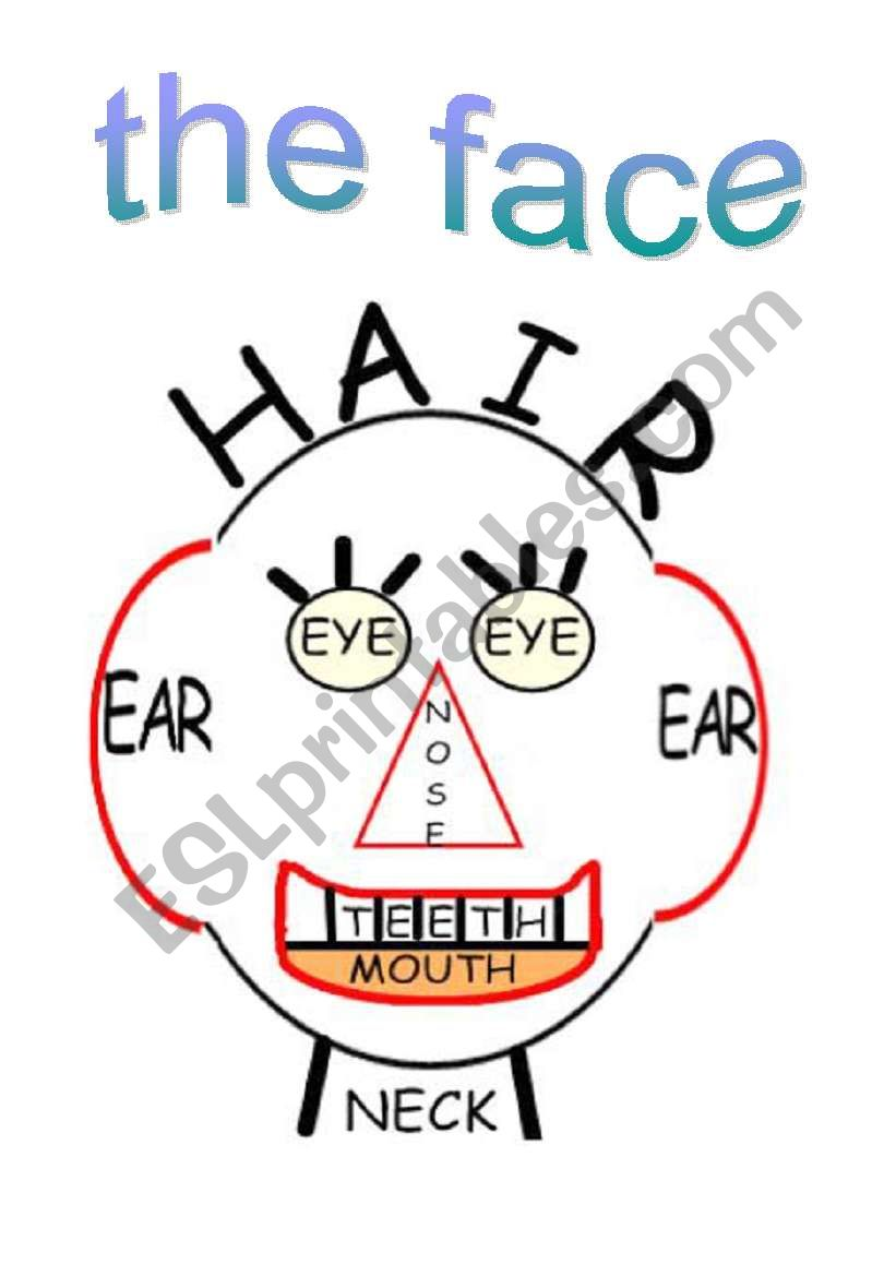 The face worksheet