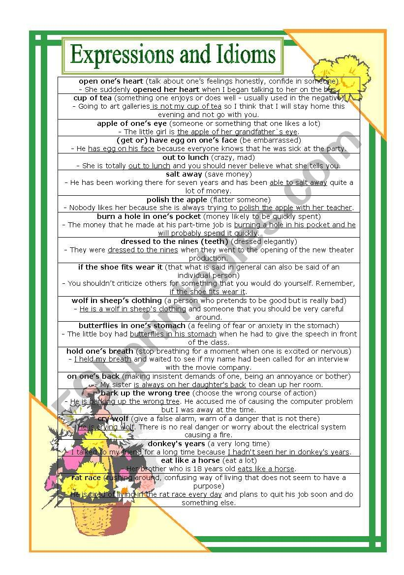 Expressions and Idioms worksheet