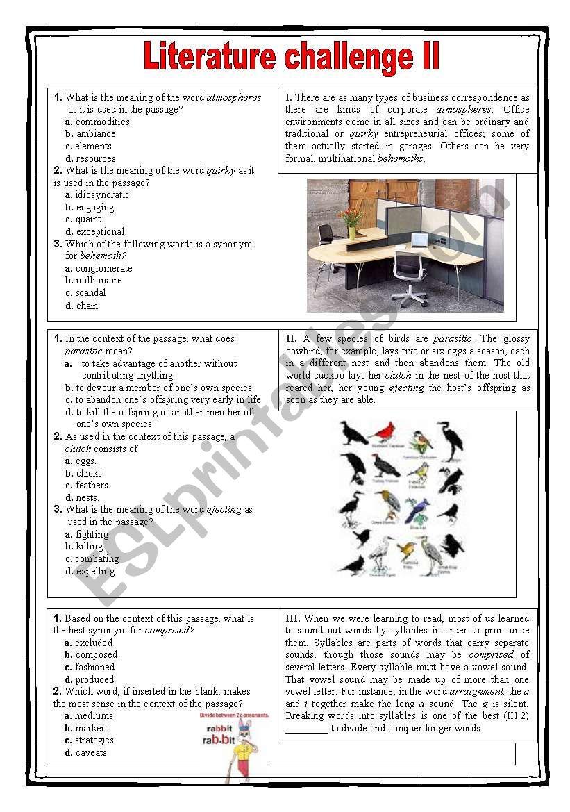 Literature challenge 2 worksheet